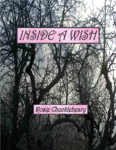 Inside a Wish front cover
